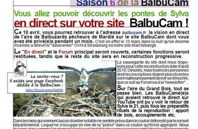 Retour de balbucam.fr le 10 avril