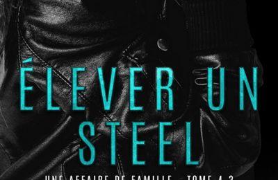 Une affaire de famille (Men of Steel) tome 4.3 : Elever un Steel de M.J FIELDS