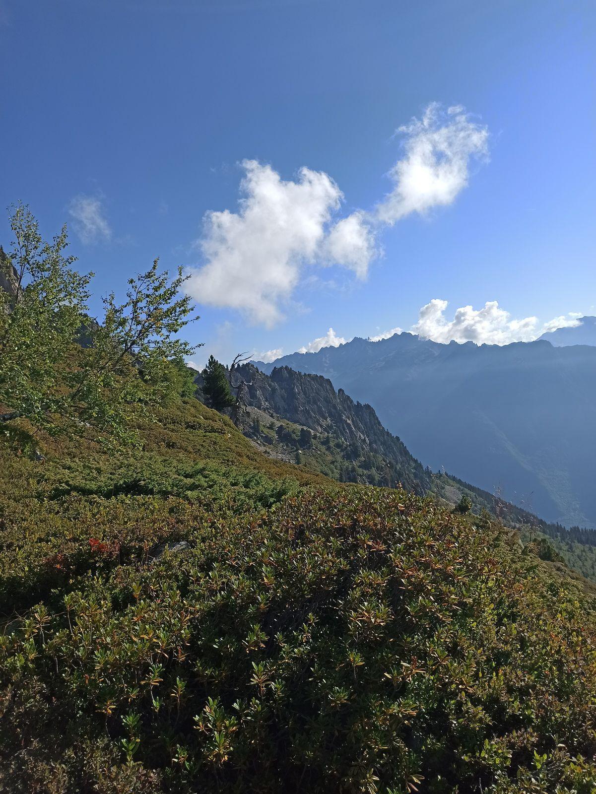 A droite le Petit Rognier, en arrière plan La Fournaise
