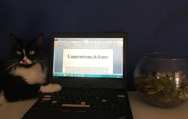 L'apprentissage de Louve