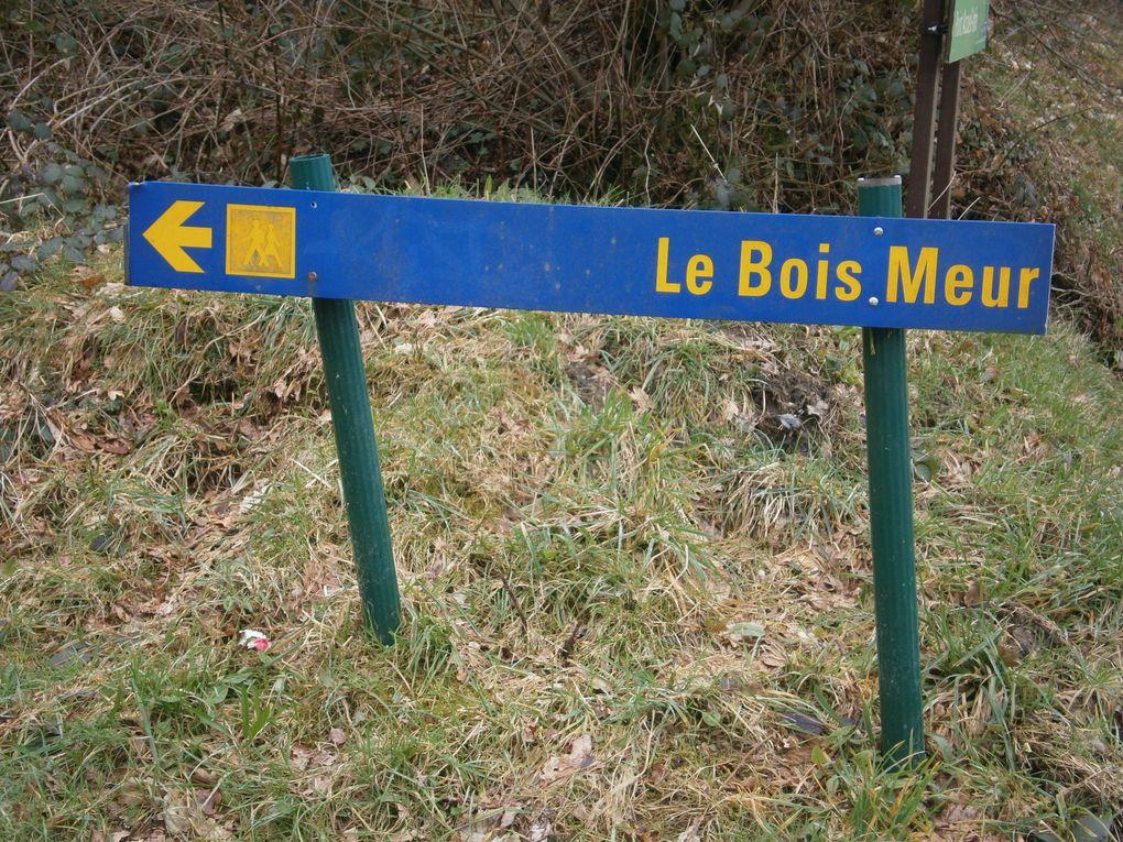 Le Bois Meur et le Bois d'Avaugour.