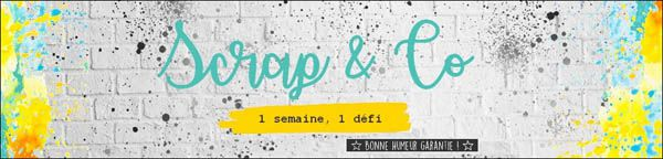 SCRAP AND CO DÉFI JANV - 10/2/21