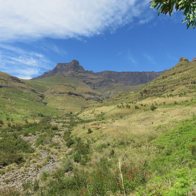 Welcome to South Africa - Canyon et montagnes du Drakensberg -