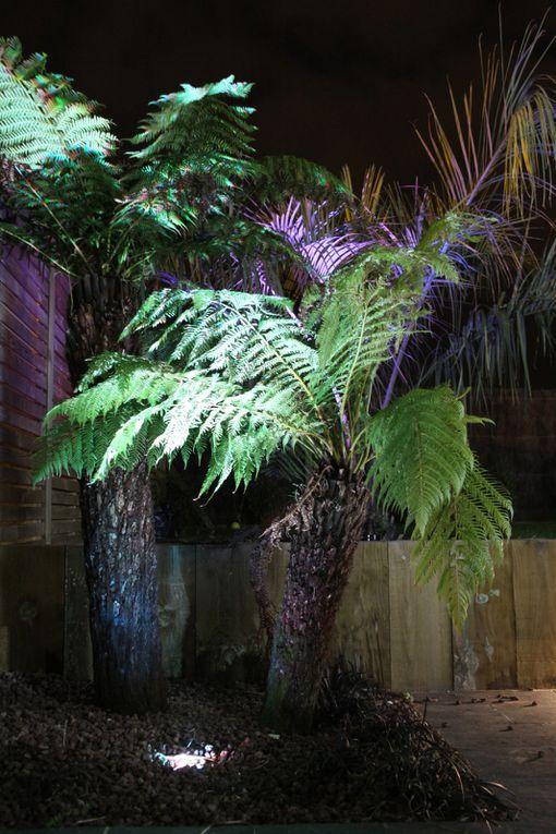 Arbor Minéral, paysagiste basé à Vannes dans le golfe du Morbihan (56) vous permet de découvrir votre jardin d'une autre manière.