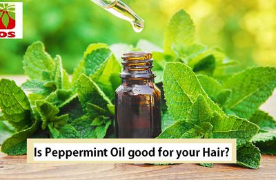 Is Peppermint Oil good for your Hair?