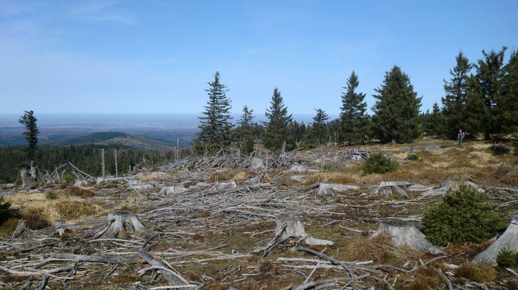 Le flanc ouest du Noll, tout comme le Narion et le Baerenberg, ressemble à un véritable champ de bataille.
