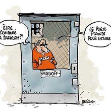 Madoff Junior