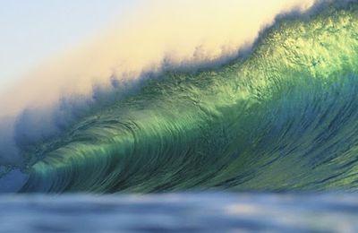 Pourquoi il n'y a pas eu de vague écologiste à Nice?