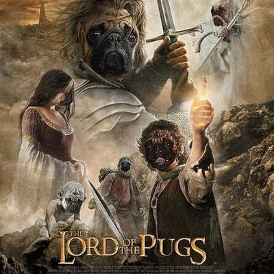 Lord od the pugs