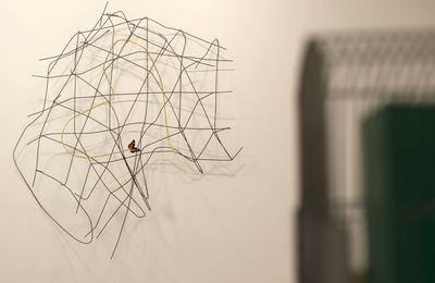 Exposition Solo Show: Franck SCURTI «Premier soleil »