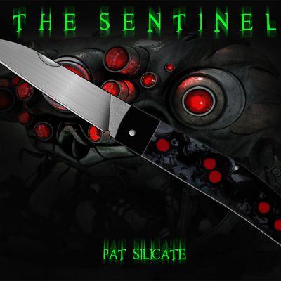 Projet : Le Sentinel