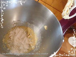 Damier de choux au chocolat et à la vanille