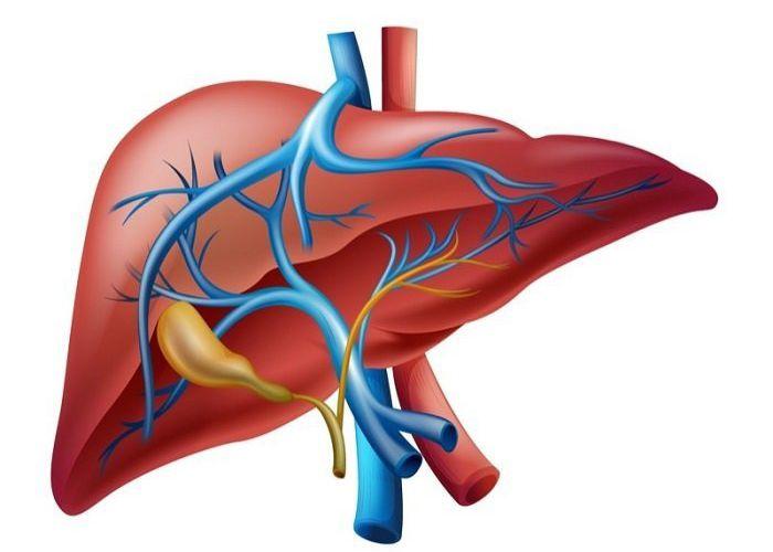 9 Poderosos Remedios Caseros Para Limpiar El Hígado