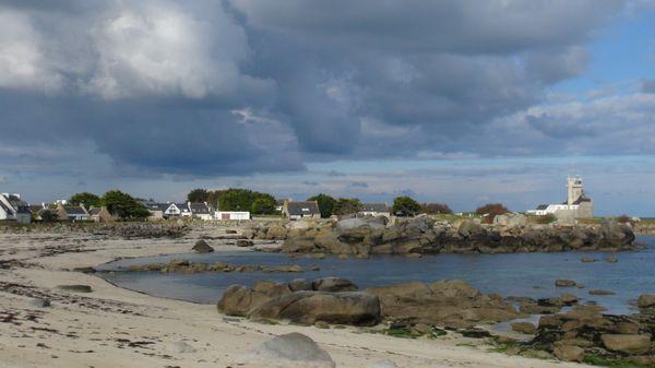 De la plage des crapauds....à la plage des chardons