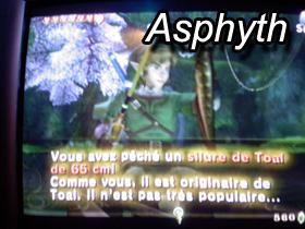 Zelda : Twilight Princess