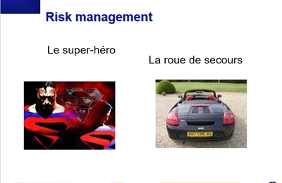 Risk Management - Fabliaux et Cartes du Management