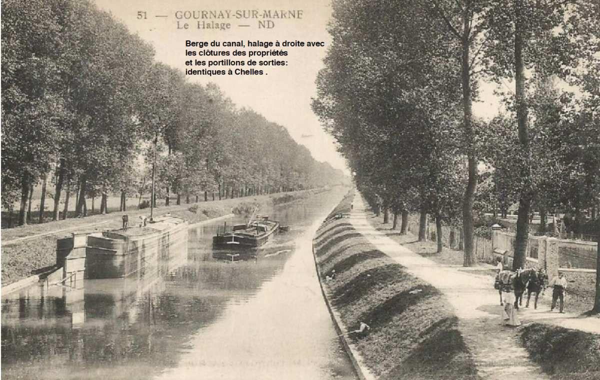 Elagage et nettoyage du quai de l'Yser sur la berge du canal de Chelles