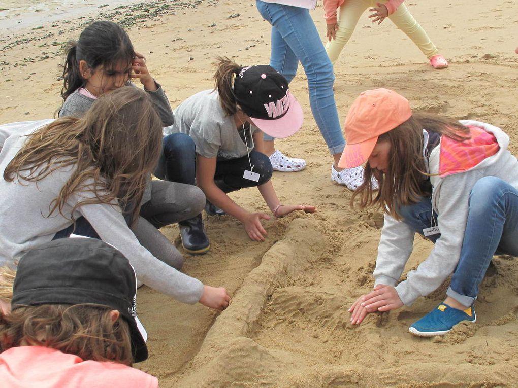 La découverte de la dune.