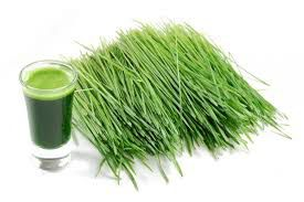 Worldwide Packaged Wheatgrass Products Market and Forecast Report till 2025