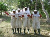 Erleak un projet d'apiculture au Bénin à KRAKE