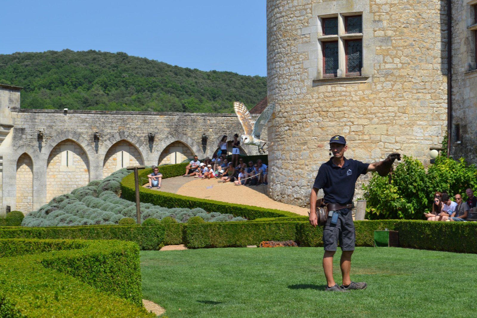 Spectacle de rapaces au château des Milandes...