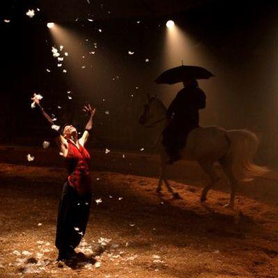 Emmène moi, un cirque équestre plein de poésie