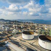 Feu vert de Nicolas Hulot à la bioraffinerie de Total approvisionnée à 50 % avec de l'huile de palme