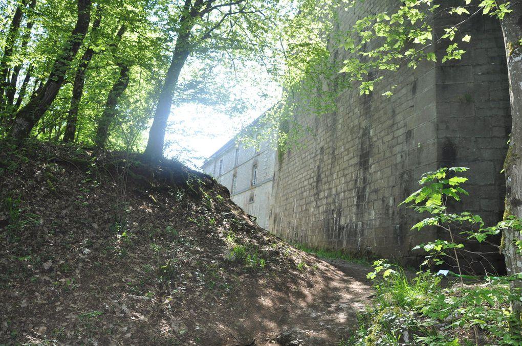 Trail des Forts (résultats)
