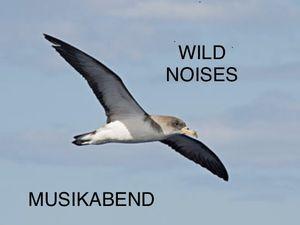 PLAYLIST und MIXCLOUD MUSIKABEND feat. lomax-deckard.de am 25.08.2018 - Wild noises, lovely August
