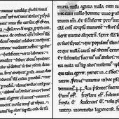 Pedro y Muño, la primera boda gay en España... en el año 1061