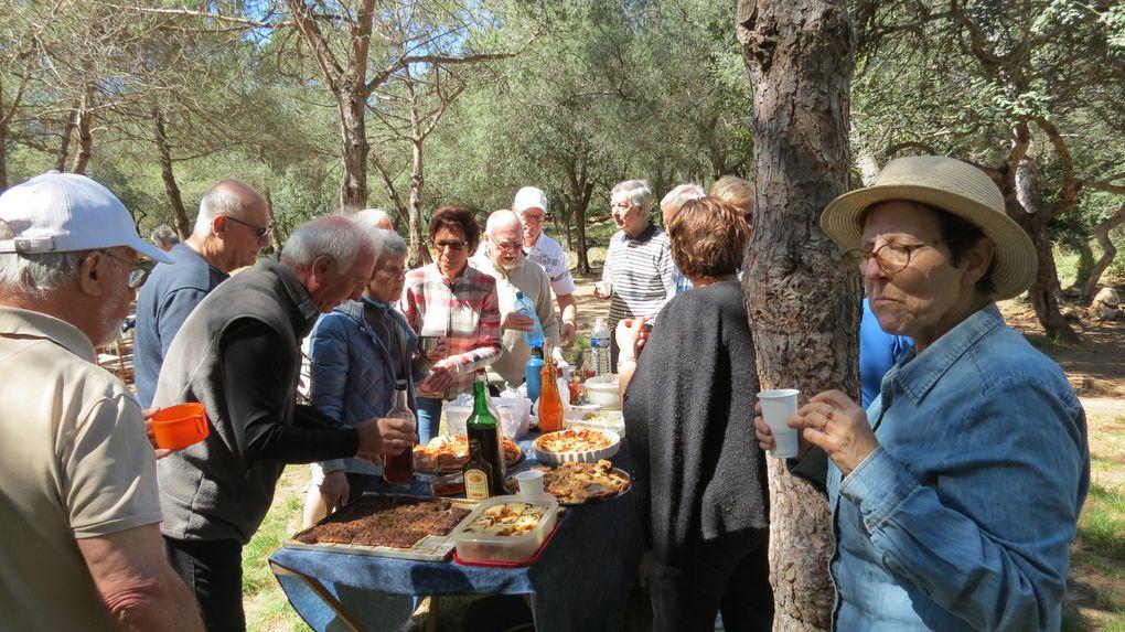 Journée Pique-Nique au parc Forestier du Mont Boron
