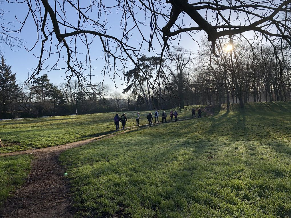 Marche Nordique au Bois de Vincennes  - 7,2 km.