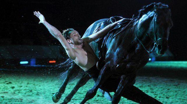 Caval'Académie, la nouvelle scène équestre d'Avignon
