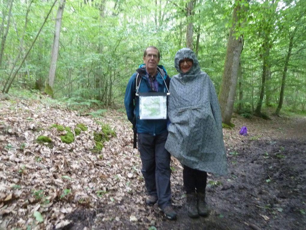 EDITION SPECIALE : Randonnée de Vernouillet-Verneuil à Mareil-sur-Mauldre - 24,9 km