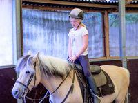 Stage Théatre Equestre Voltige Wattrelos 24-28/07/2017