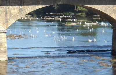 Dordogne, rivière occitane: au pays des malpas