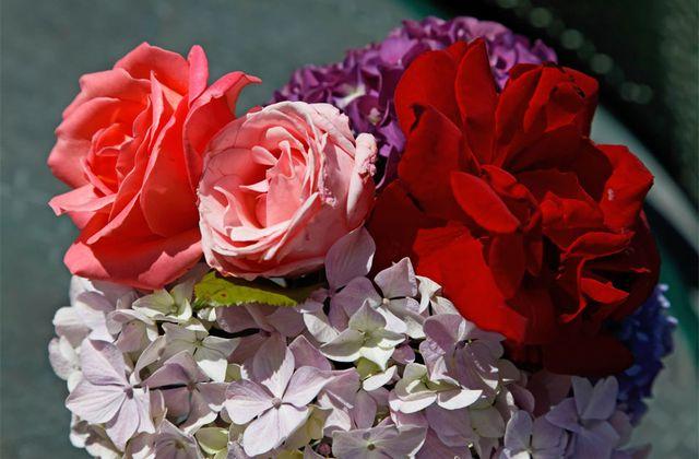 Autour d'un bouquet