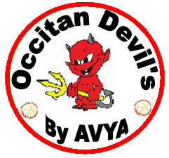 RDV Meeting virtuel Airexpo 2018 des Occitan Devil's !...