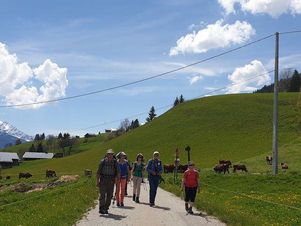 Randonnée ADAPAR en boucle depuis le sentier balisé des Vanches jusqu'au Pémonts et retour par le sentier balcon des Côtes