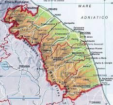Vines and the region ( Marche )