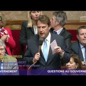 assemblée nationale fibromyalgie 11 janvier 2017 - YouTube