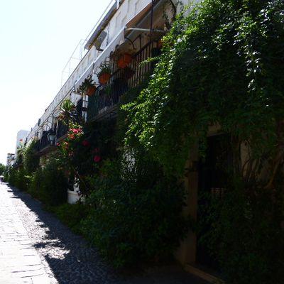 Séville (part-3 et fin)