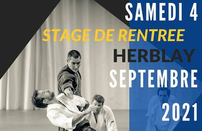 Stage de Rentrée Issei Tamaki à Herblay, samedi 4 septembre