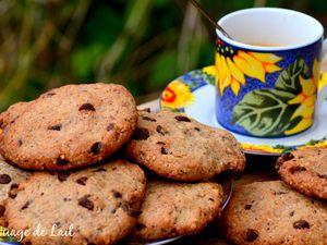 Cookies au Sarrasin, Noisette & Chocolat
