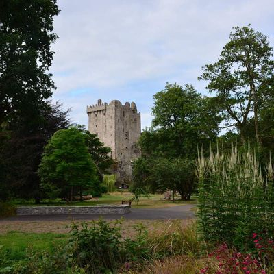 Blarney Castle et Cobh - Irish Road Trip