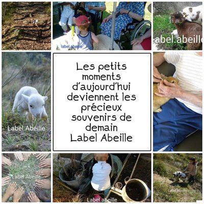 Direction Label.abeille