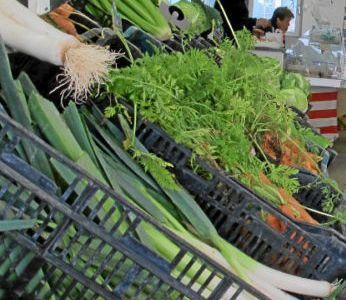 St Martin Lalande - les légumes de la famille Contier