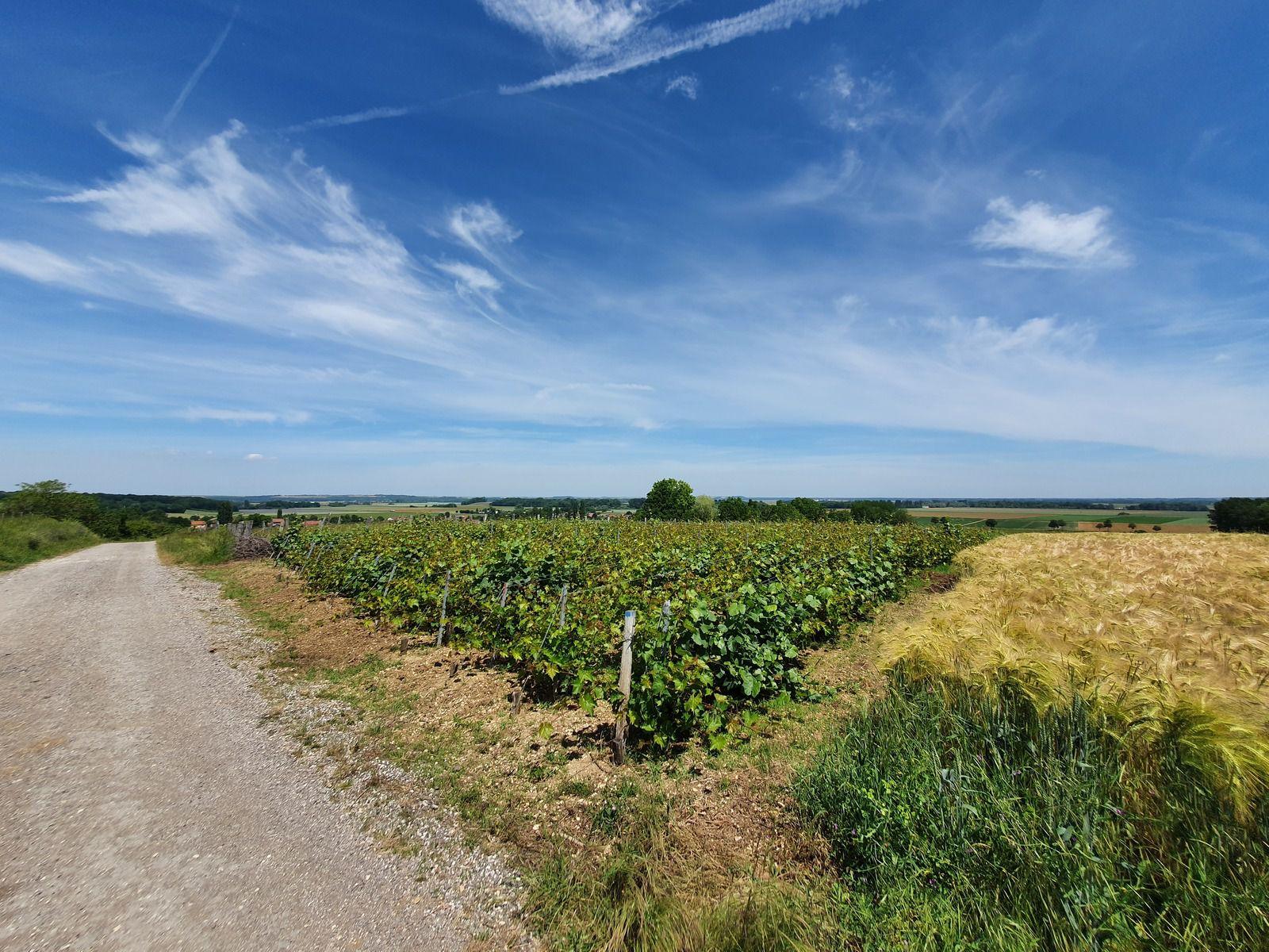 En route vers Brienne-le-Château