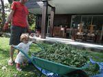 Quand Madonie aide son papa à jardiner