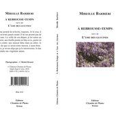 À rebrousse-temps - Mireille Barbieri